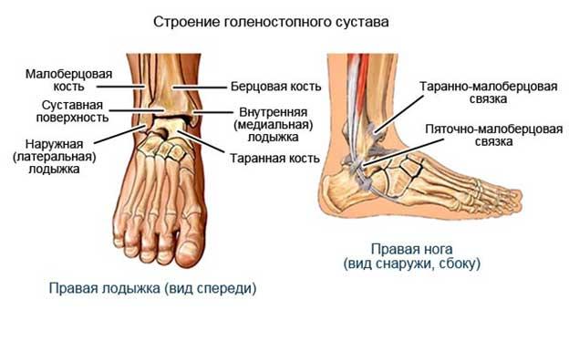Посттравматический артроз голеностопаложный сустав массаж тазобедренных суставов при арт